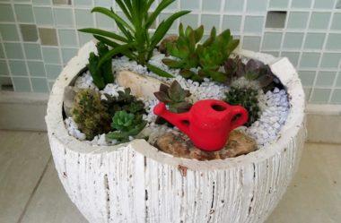 Mini Jardim: 8 Passos para Montar o Seu