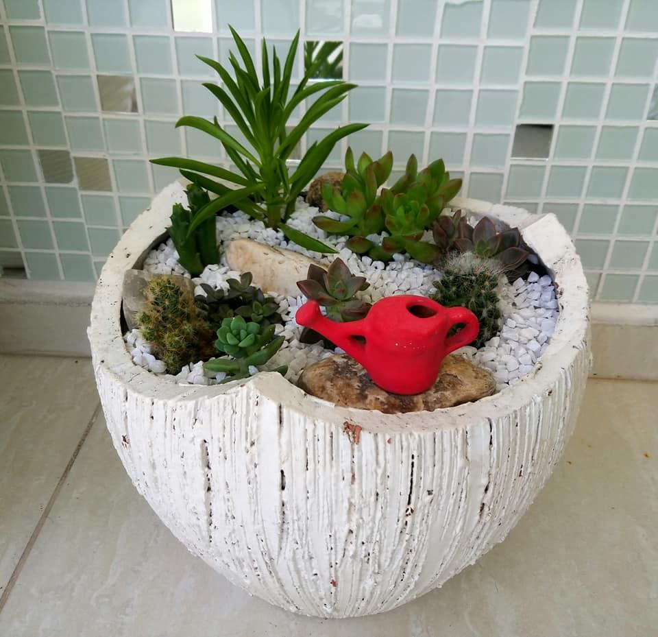 peça ornamental - Mini Jardim: 8 Passos para Montar o Seu