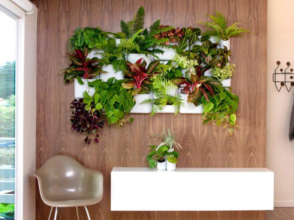 parede 1024x768 - Como Fazer um Jardim Vertical