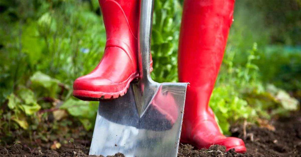 Gardening for Exercise Header 1024x536 - JARDINAGEM | Conheça 5 BENEFÍCIOS de Saúde