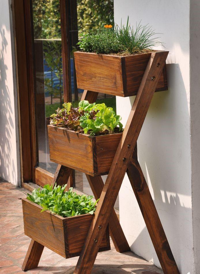 hortinha 1 - PLANTAS para APARTAMENTOS   MELHORES Opções