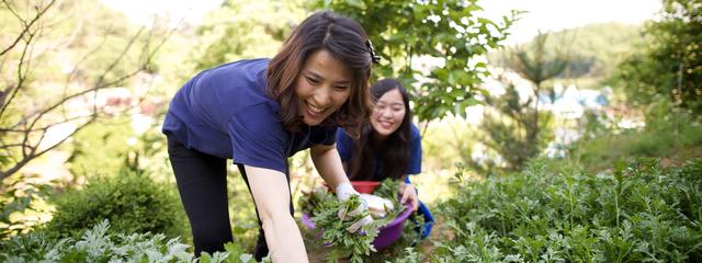 melhore o humor - JARDINAGEM | Conheça 5 BENEFÍCIOS de Saúde