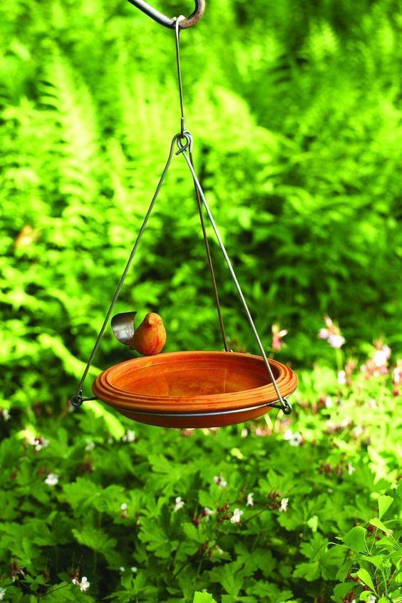 alimentador - PÁSSAROS no Jardim | 5 PASSOS para Atrair