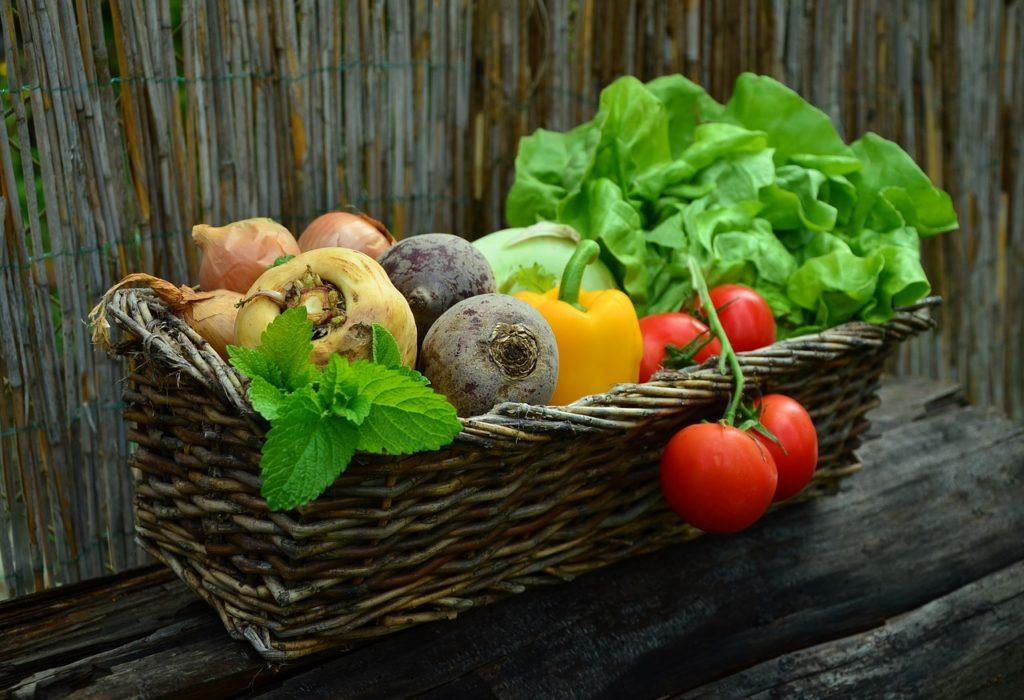 vegetables 752153 1280 1 1024x700 - 12 DICAS de JARDINAGEM que todo Jardineiro PRECISA SABER