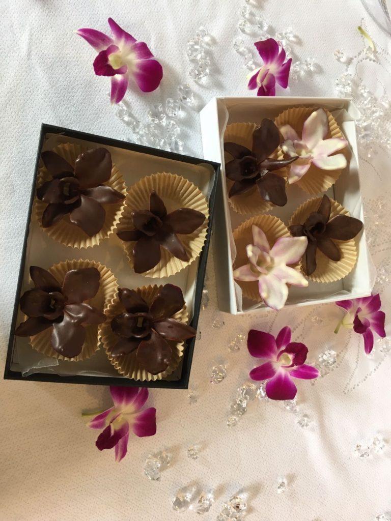 cheiro de chocolate 768x1024 - 9 FATOS SURPREENDENTES que você não sabia sobre o seu JARDIM