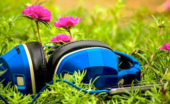 plantas e o som - 9 FATOS SURPREENDENTES que você não sabia sobre o seu JARDIM