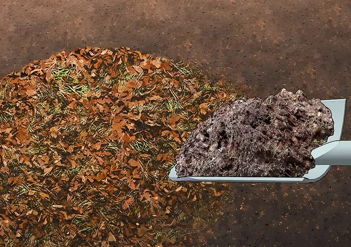 compostagem com folhas - ADUBO NATURAL | Como FAZER?