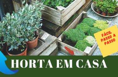 Novo Vídeo: HORTA EM CASA – Fácil Passo a Passo