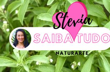 Novo Vídeo: STEVIA | Saiba Tudo para Plantar, Cultivar e Fazer o ADOÇANTE NATURAL