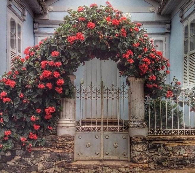 jardim vertical em portões 1 - JARDINS VERTICAIS : 12 DICAS Úteis de Design