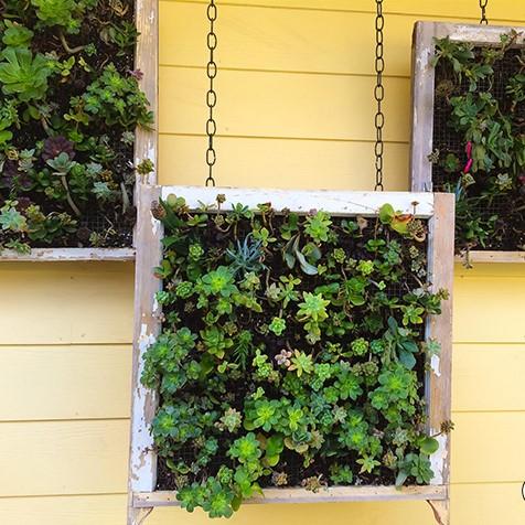 jardim vertical em quadros 1 - JARDINS VERTICAIS : 12 DICAS Úteis de Design
