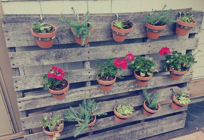 jardim vertical em vasos 3 - JARDINS VERTICAIS : 12 DICAS Úteis de Design