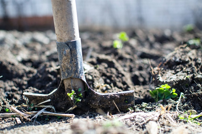 como fazer um jardim 1 - COMO FAZER UM JARDIM Começando do Zero! 10 Passos para Iniciantes