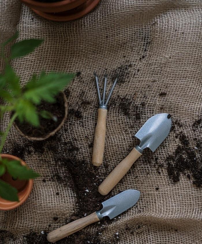 como fazer um jardim 5 - COMO FAZER UM JARDIM Começando do Zero! 10 Passos para Iniciantes