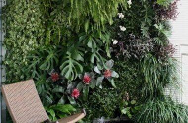 JARDIM VERTICAL: 15 Plantas Pra Sua Parede Verde!
