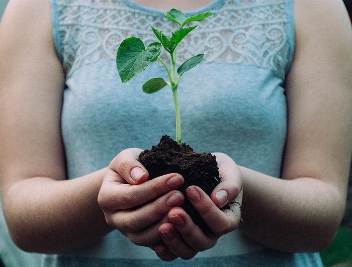 Ideias de jardinagem para voce comecar16 - IDEIAS DE JARDINAGEM: 9 DICAS PARA VOCÊ COMEÇAR