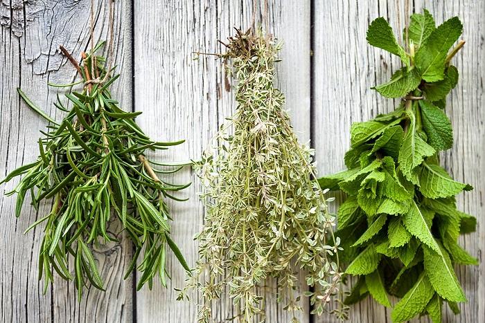 Ideias de jardinagem para voce comecar17 - IDEIAS DE JARDINAGEM: 9 DICAS PARA VOCÊ COMEÇAR