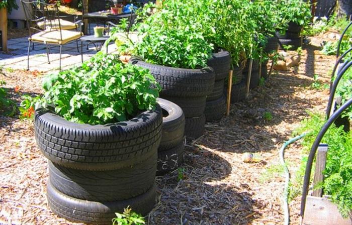 Ideias de jardinagem para voce comecar8 - IDEIAS DE JARDINAGEM: 9 DICAS PARA VOCÊ COMEÇAR