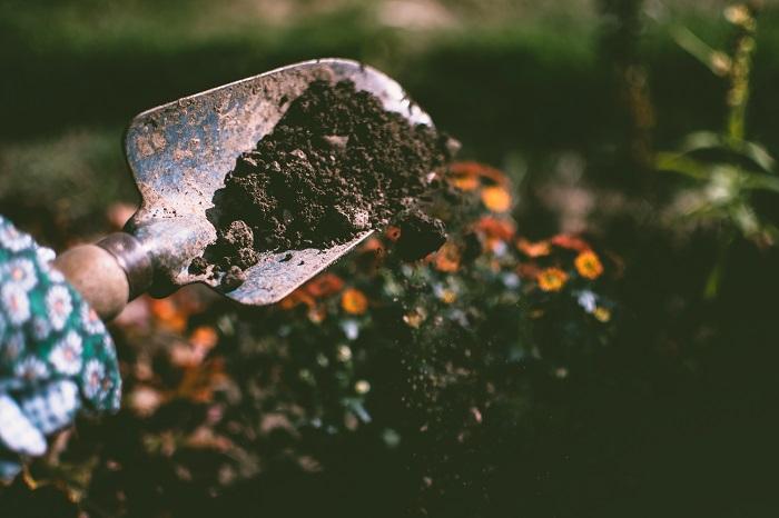 jardim sustentavel 4 - JARDIM SUSTENTÁVEL: 10 Passos Para Ter O Seu!