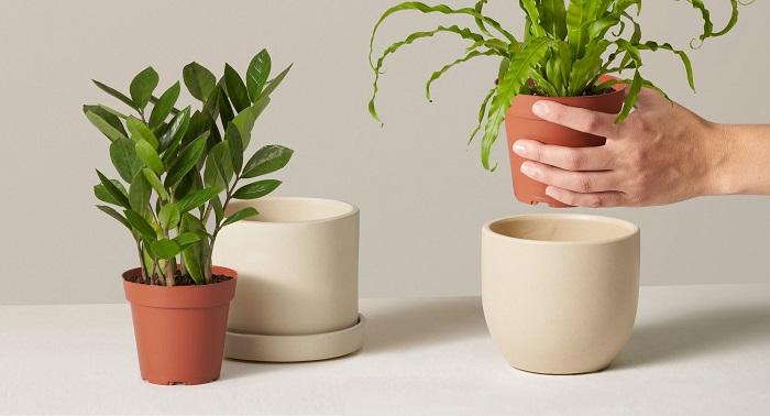 os melhores vasos10 - 4 Dicas para Escolher os MELHORES VASOS PARA PLANTAS