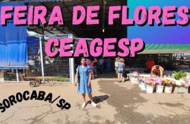 Novo Vídeo: REVELADO!! Visitei a Feira de Flores CEAGESP e Você vai se Surpreender com Tudo que Descobri!