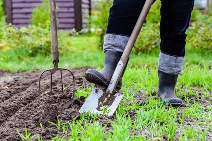 jardineiro 1 - SERVIÇO DE JARDINAGEM | 6 DICAS para Você Contratar