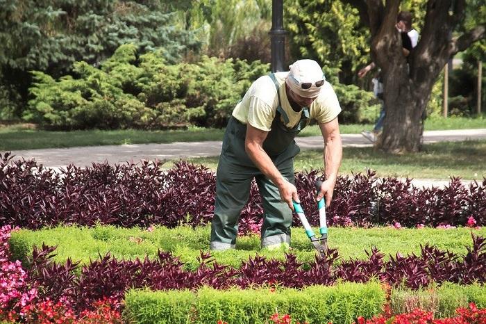 jardineiro 2 - SERVIÇO DE JARDINAGEM | 6 DICAS para Você Contratar