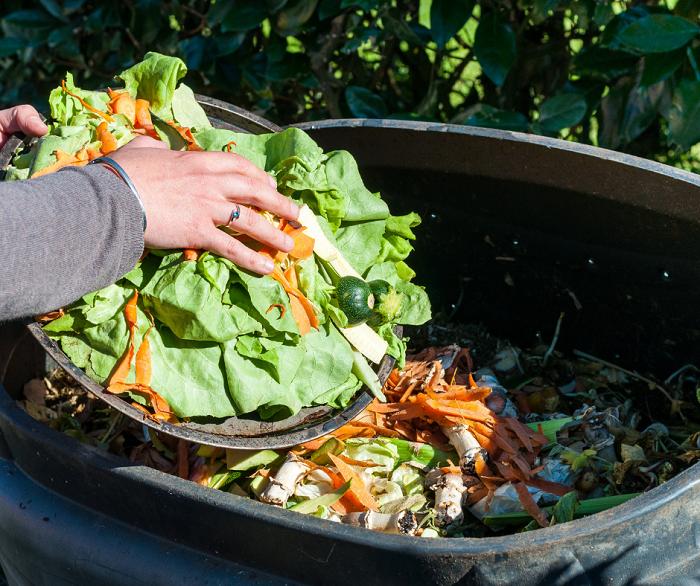 compostagem1 1 - Composteira Orgânica: 4 Idéias Para Começar a sua