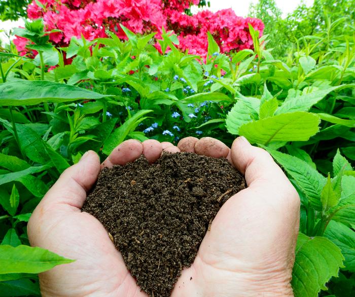compostagem5 - Composteira Orgânica: 4 Idéias Para Começar a sua