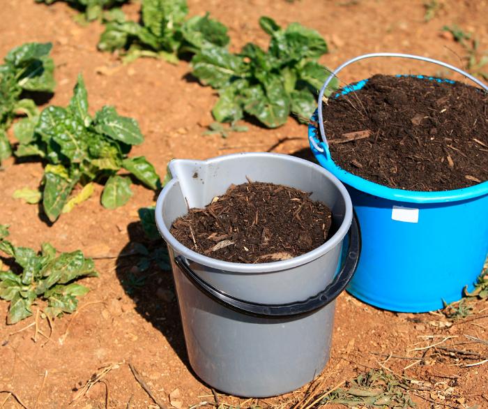 compostagem8 - Composteira Orgânica: 4 Idéias Para Começar a sua