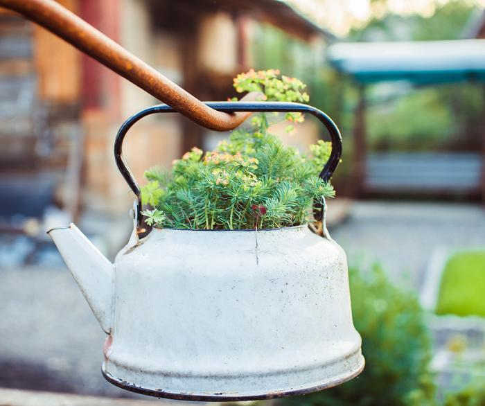 belo jardim - 10 Dicas para Você Criar Belos Jardins