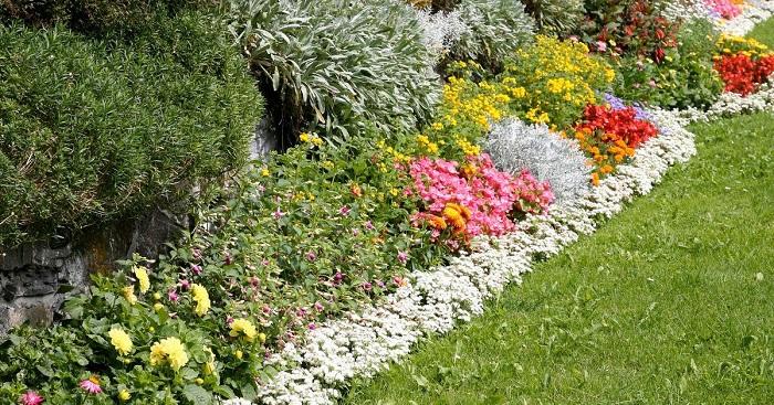 belo jardim10 - 10 Dicas para Você Criar Belos Jardins