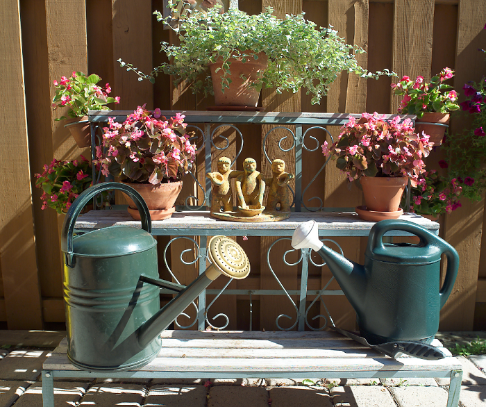 belo jardim3 - 10 Dicas para Você Criar Belos Jardins