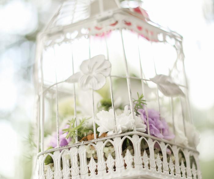 belo jardim5 - 10 Dicas para Você Criar Belos Jardins