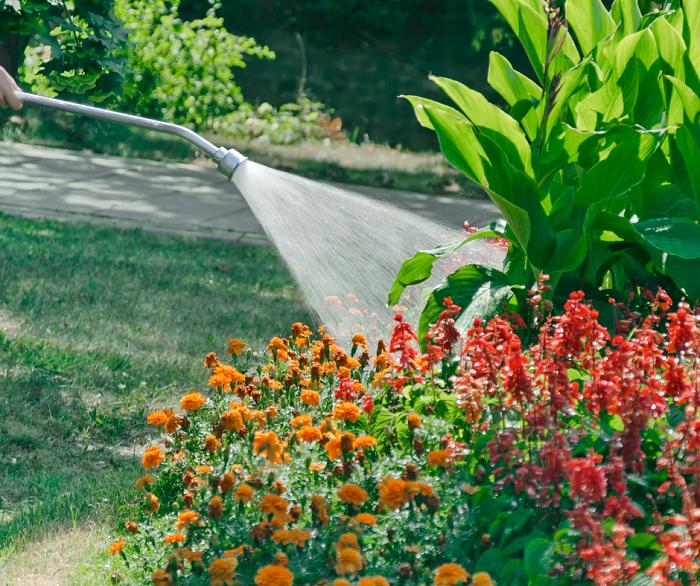 belo jardim6 - 10 Dicas para Você Criar Belos Jardins
