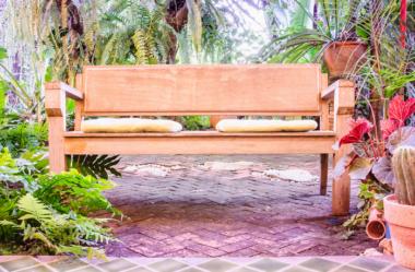 10 Dicas para Você Criar Belos Jardins