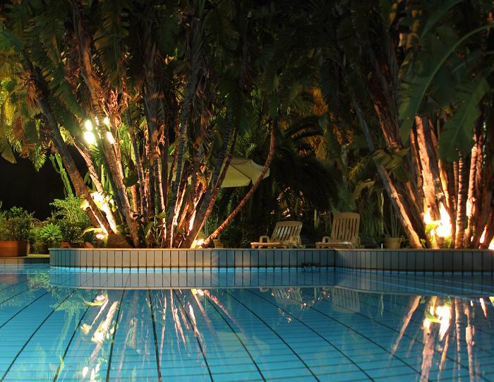 Plantas para area da piscina - 12 IDEIAS De Projeto de Jardim para uma ÁREA DE PISCINA