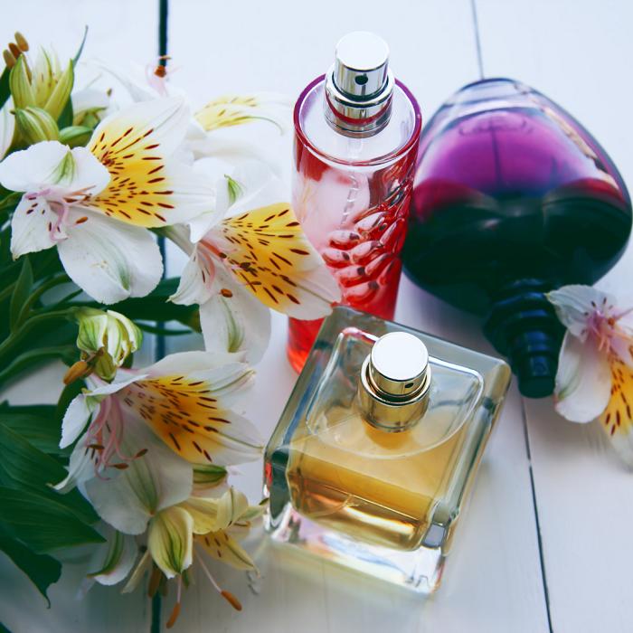 AS 10 FLORES mais perfumadas - AS 10  FLORES MAIS PERFUMADAS | CONFIRA NOSSA LISTA