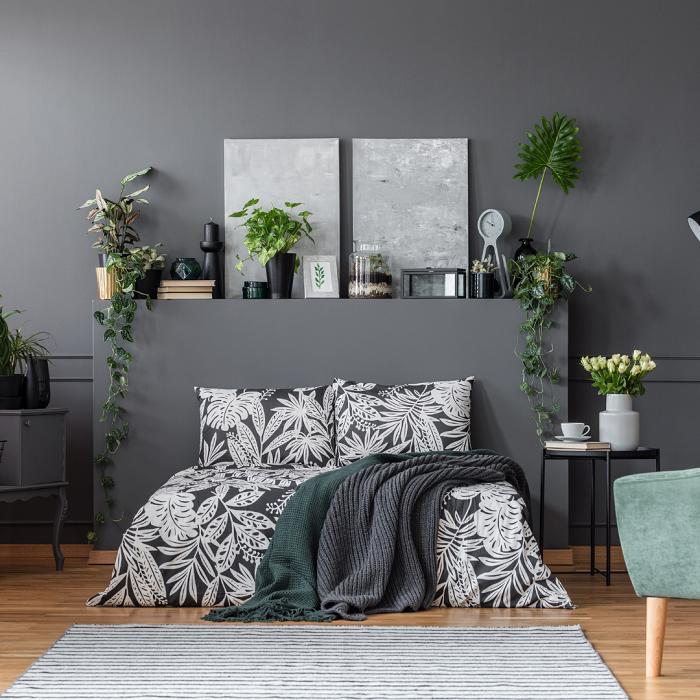 Combinando cores e plantas - PLANTAS DE INTERIOR - Conheça 7 CORES para Complementar
