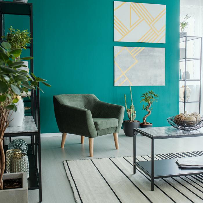 Combinando cores e plantas3 - PLANTAS DE INTERIOR - Conheça 7 CORES para Complementar