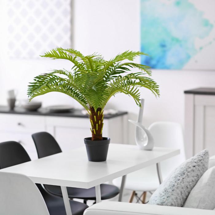 Combinando cores e plantas5 1 - PLANTAS DE INTERIOR - Conheça 7 CORES para Complementar