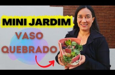 Mini Jardim no Vaso Quebrado – Passo a Passo Completo