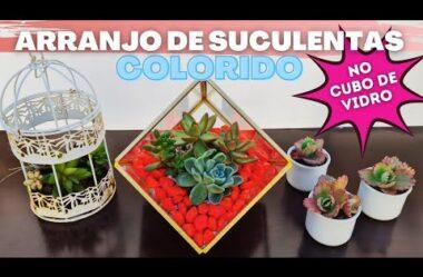 Aprenda a Fazer um ARRANJO DE SUCULENTAS COLORIDO no Cubo de Vidro