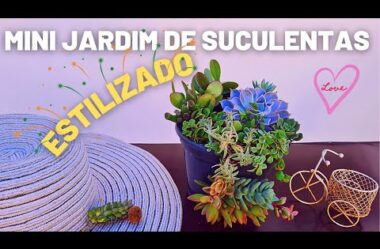 Mini Jardim de Suculentas ESTILIZADO! Técnica Incrível Para Você INOVAR!