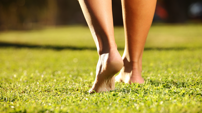 5 Coisas Que Nao Deveriam Faltar No Jardim 2 - 5 Coisas Que Não Devem Faltar Nos CUIDADOS COM JARDIM