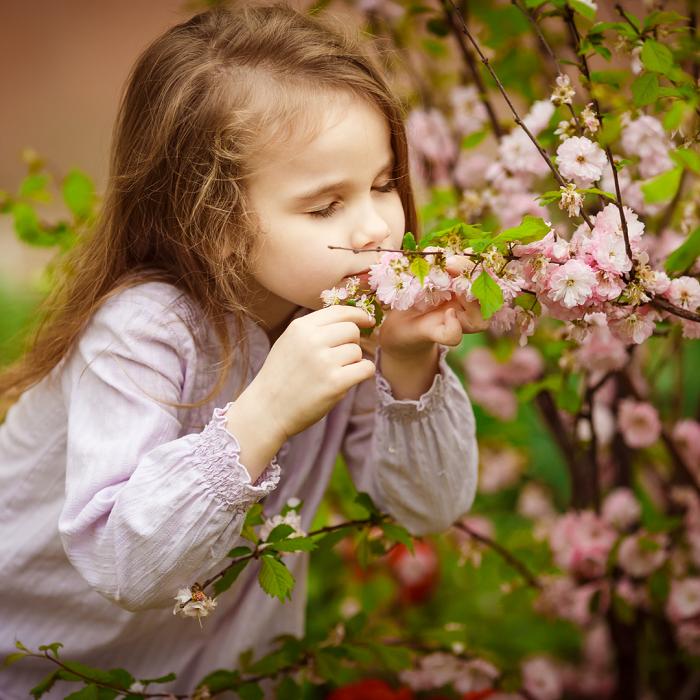 7 Dicas Para Tornar Seu Jardim Adequado Para Criancas 11 - 7 Dicas Para Jardim Adequado Para Crianças