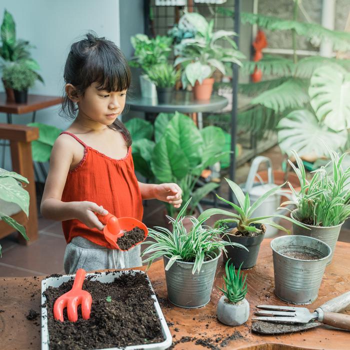 7 Dicas Para Tornar Seu Jardim Adequado Para Criancas 15 - 7 Dicas Para Jardim Adequado Para Crianças