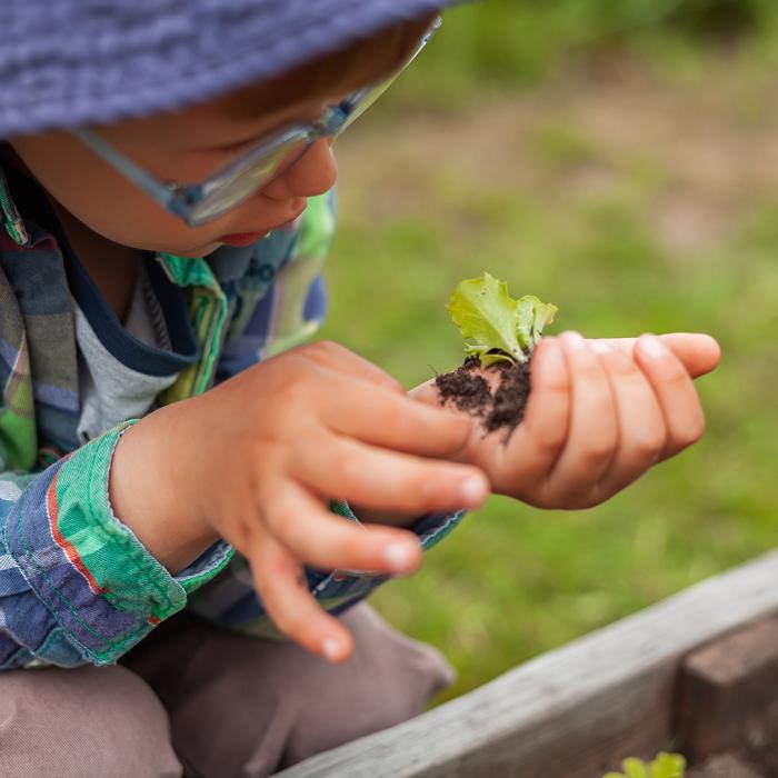 7 Dicas Para Tornar Seu Jardim Adequado Para Criancas 18 - 7 Dicas Para Jardim Adequado Para Crianças