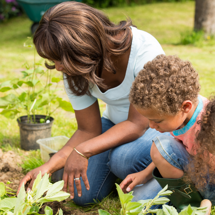 7 Dicas Para Tornar Seu Jardim Adequado Para Criancas 19 - 7 Dicas Para Jardim Adequado Para Crianças