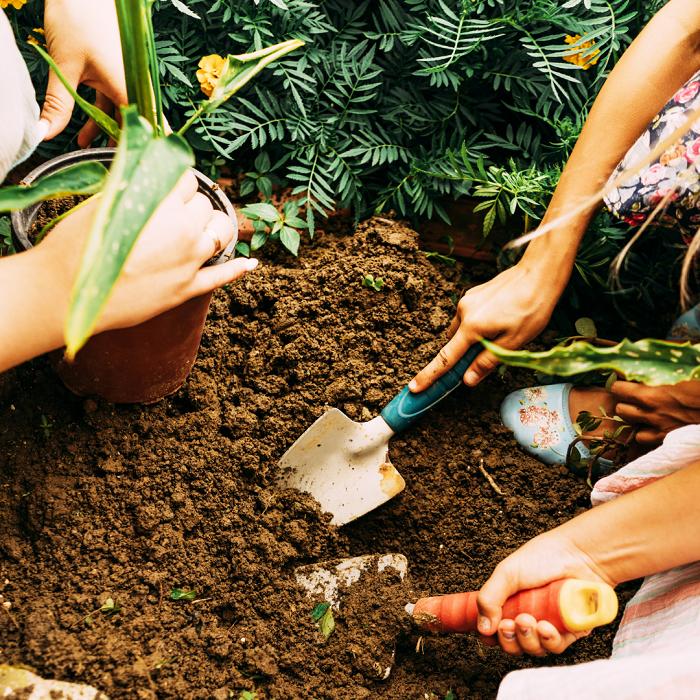7 Dicas Para Tornar Seu Jardim Adequado Para Criancas 21 - 7 Dicas Para Jardim Adequado Para Crianças
